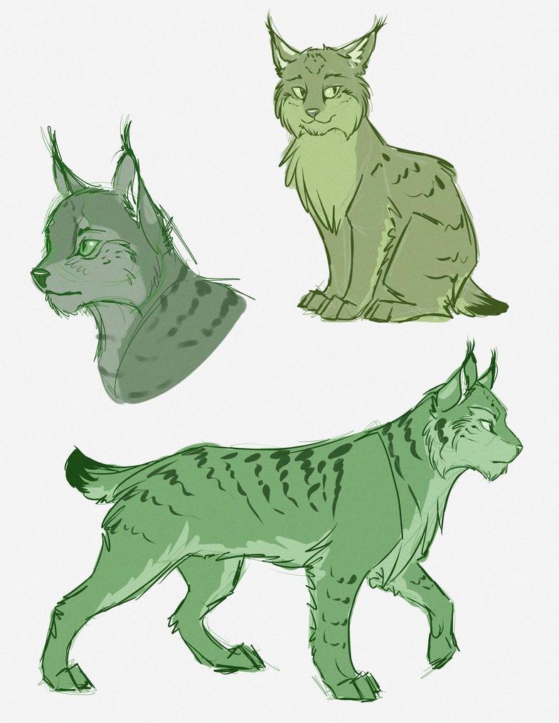 Lynx Doodles by nirac
