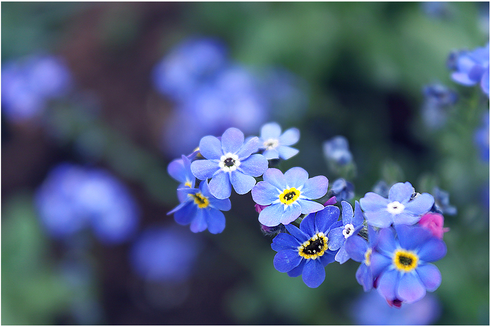Lovely heart azure духи - 9