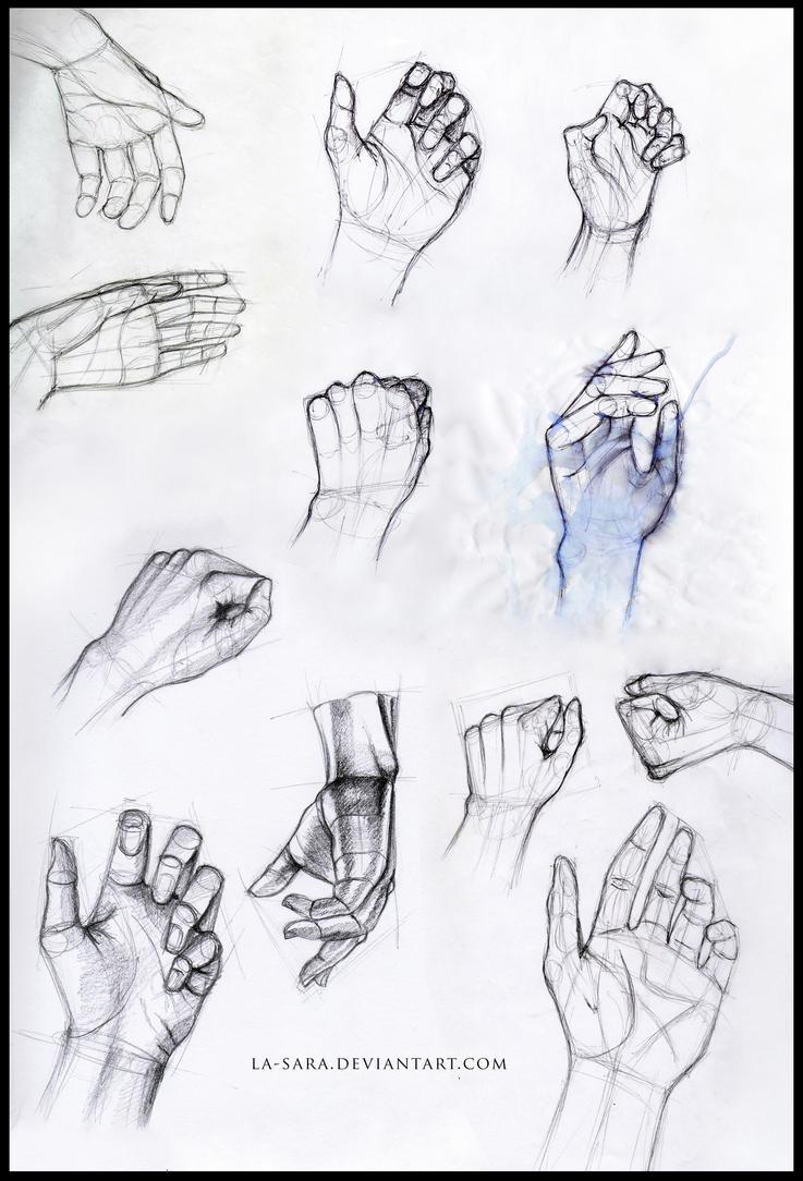 Hand anatomy by La-Sara on DeviantArt