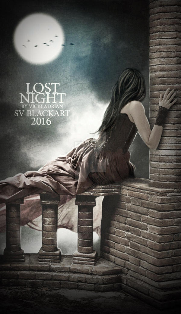 Lost Night by SV-Blackart