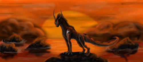 Ilias in the sunset by Crazy-Cat009