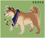 Pence Dog Concept