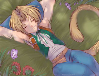Napping Zidane by Nyaasu