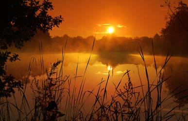 dawn by siks