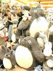 Totoro, Totoro
