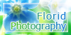 Florid-Photography GroupAvatar by DyyyyPhoto