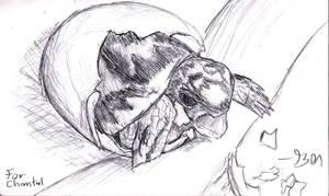 Turtle by Zebbedy42