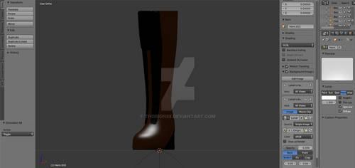Leilah's Boot