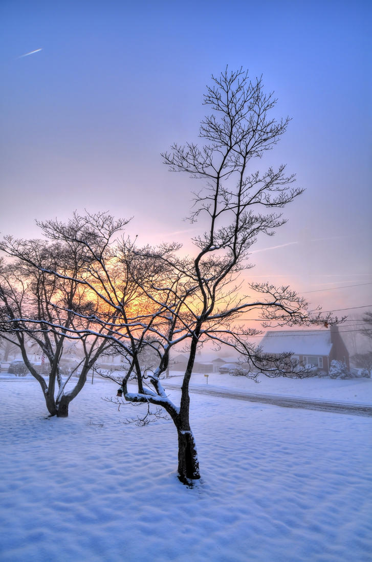 Winter Sunrise by Blaklisted