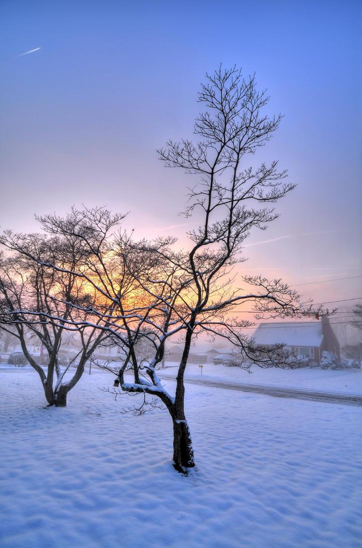 Winter Sunrise by Enkased