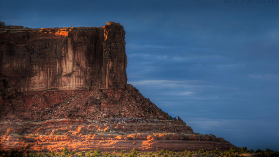 One of Many Giants by Enkphoto