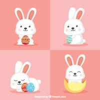Cute Funny Bunny