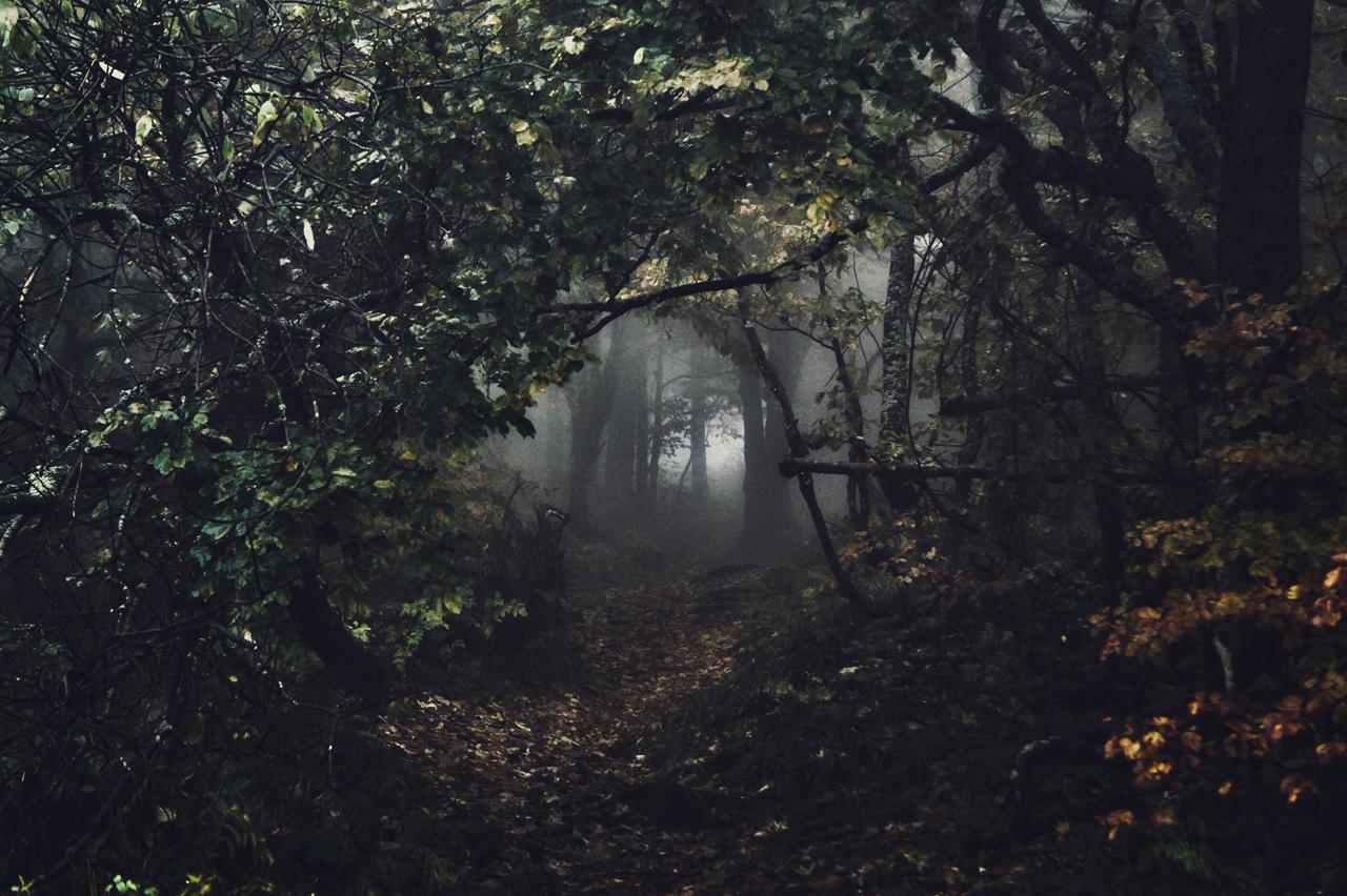 Dark passage by kriskeleris