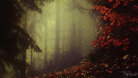 The veil of bloody autumn by kriskeleris