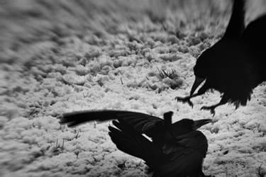The wrath of black hearts by kriskeleris