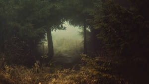 Gate to mystical dimension