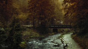 Toward forever autumn by kriskeleris