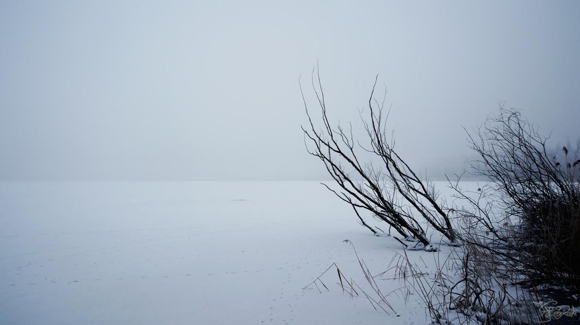 Desolation by kriskeleris