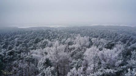 The frozen horizon