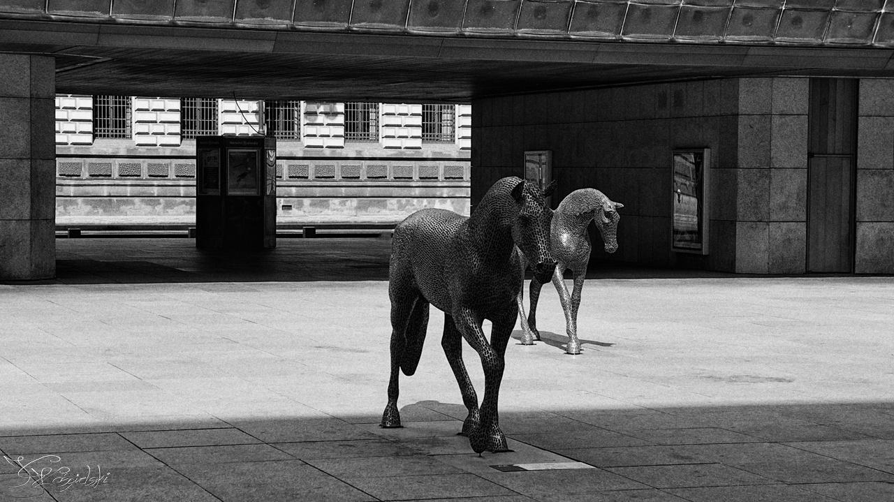 Horses by kriskeleris