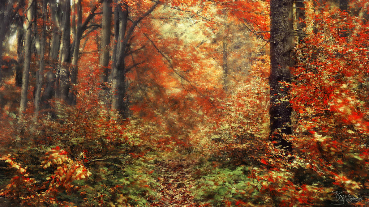 A walk through the painterly forest by kriskeleris