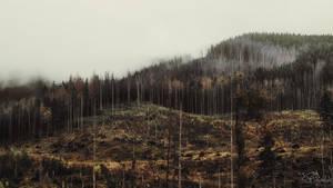 Dust of the forgotten land by kriskeleris