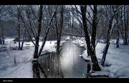 Silver winter by Eun-su