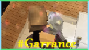 Garrance stamp by Shotachair356