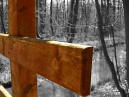Wood by mdosch