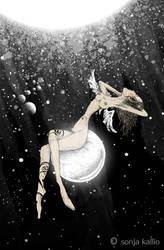 star basking by sonjakallio