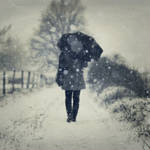 through the snow by photoflake