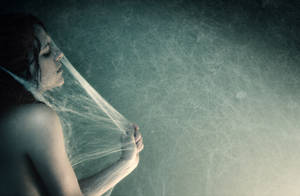 cocoon by photoflake