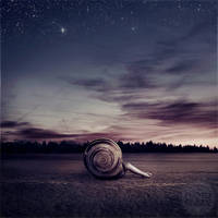 comfort zone by photoflake