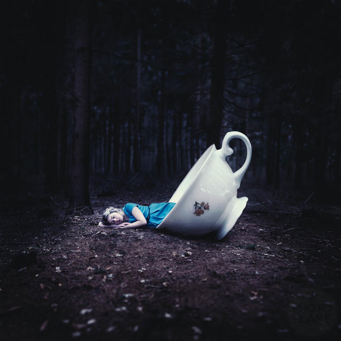 take me to wonderland by photoflake