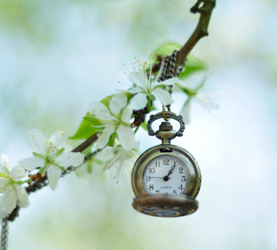 clock by FairyCat60s