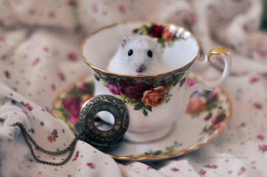 Speedy loves tea