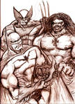 Battle Royal Batman Lobo and Wolverine
