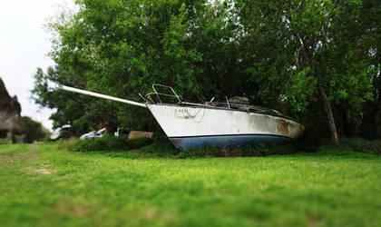 Boat on a Verdant Sea