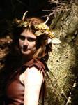 Faery Queen by wayward-drui
