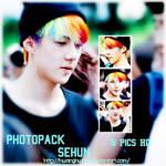 SeHun (EXO) PHOTOPACK#15