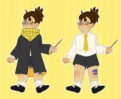 Harry Potter Sona