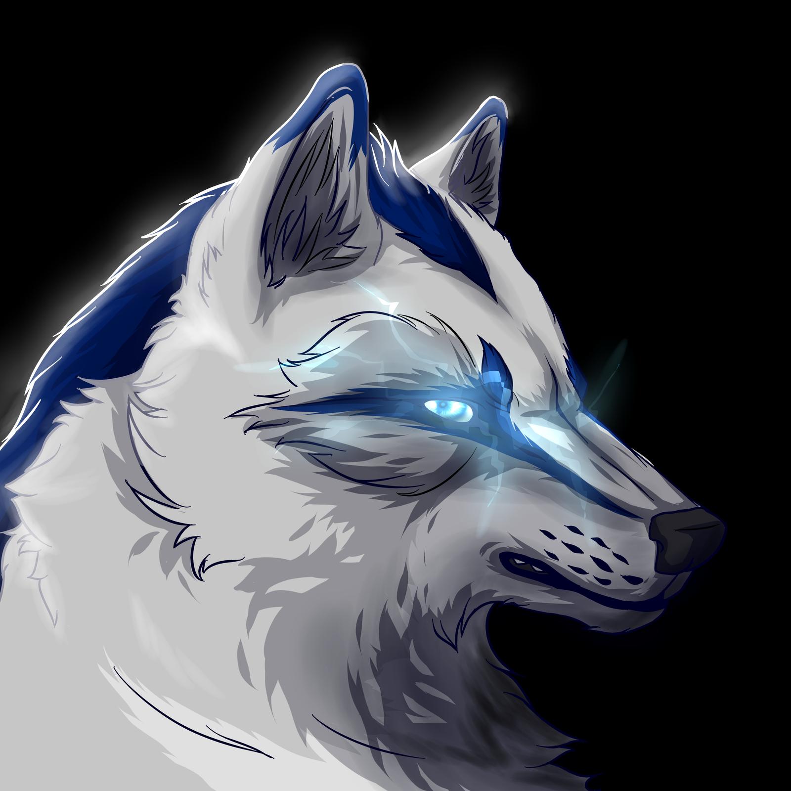 Storm-Cwalker's Profile Picture