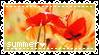 01.01.15 { Summer Stamp }
