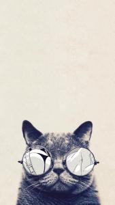 ReD8Graphics's Profile Picture