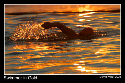 Swimming in Gold