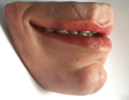 Macro Mouth - tooth detail by Jengabean