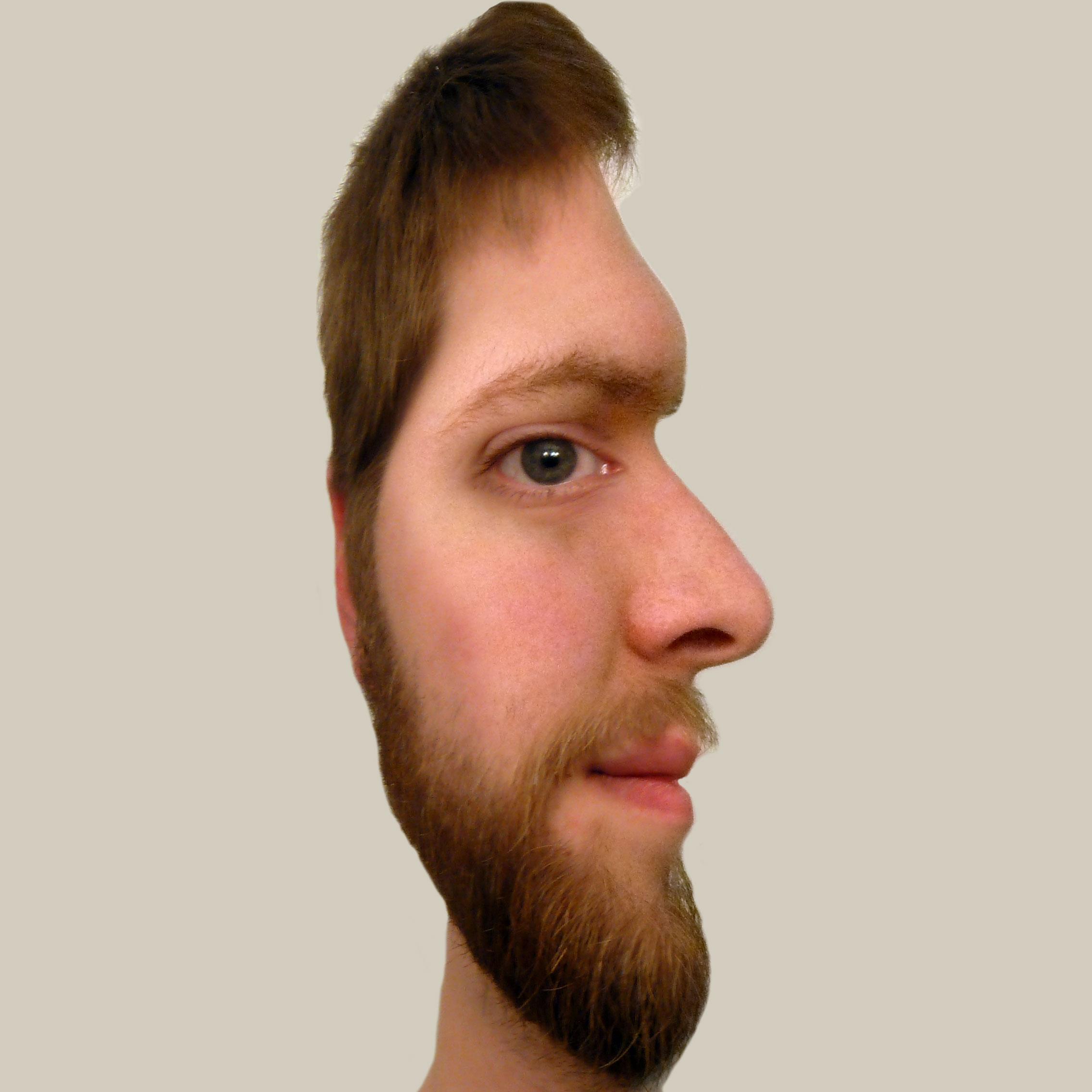 Face Illusion by West-Ninja on DeviantArt
