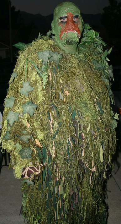 http://fc01.deviantart.net/fs70/f/2013/170/5/5/swamp_thing_costume_by_c2comics-d69sh9u.png