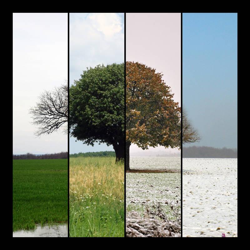 4 seasons by angel-maritza