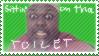 Sittin' on tha toilet stamp by latsy